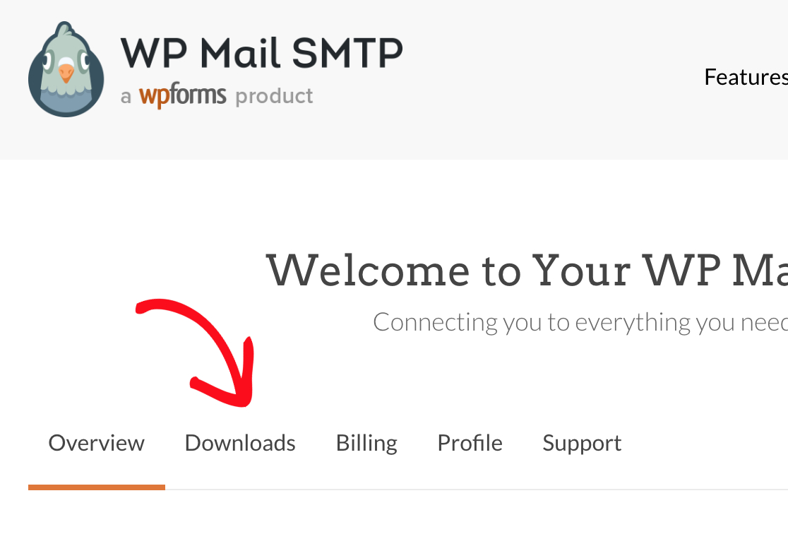Click on Downloads tab in WP Mail SMTP account