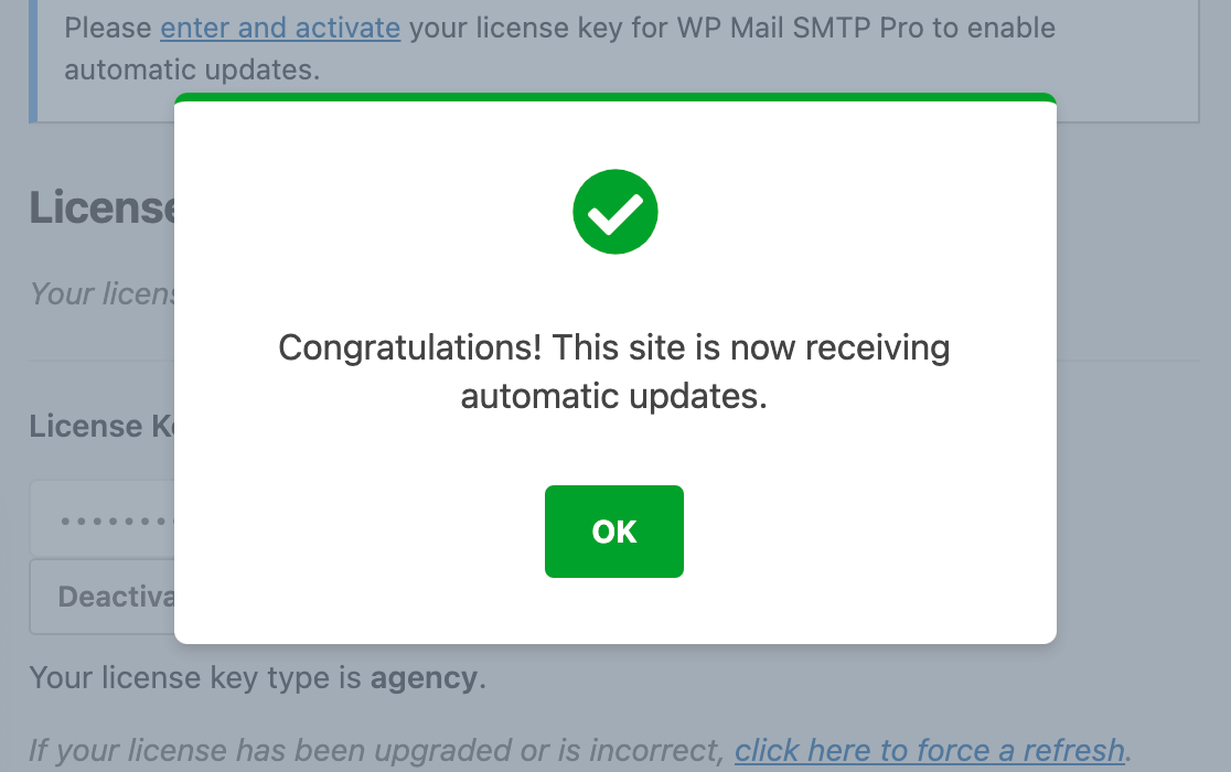 A confirmation notification for license verification in WP Mail SMTP