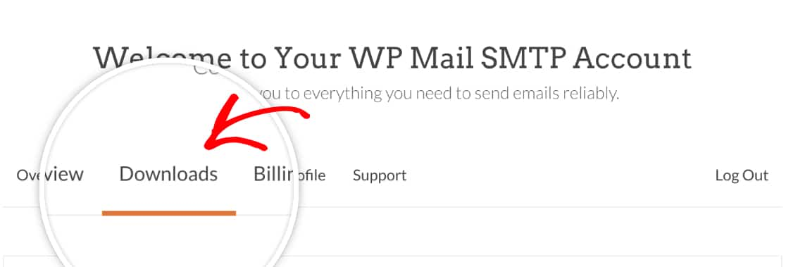 Open the Downloads tab in your WP Mail SMTP account