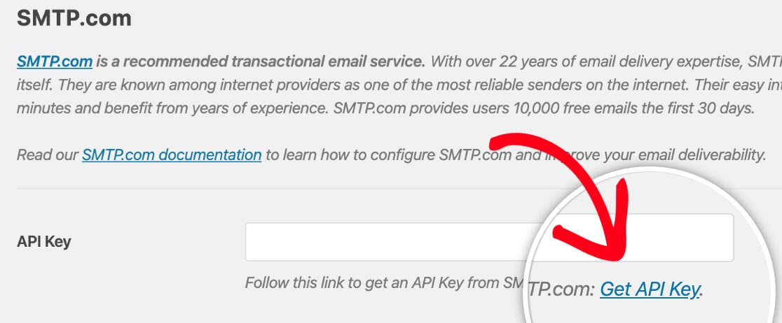 Follow the API Key link within WP Mail SMTP