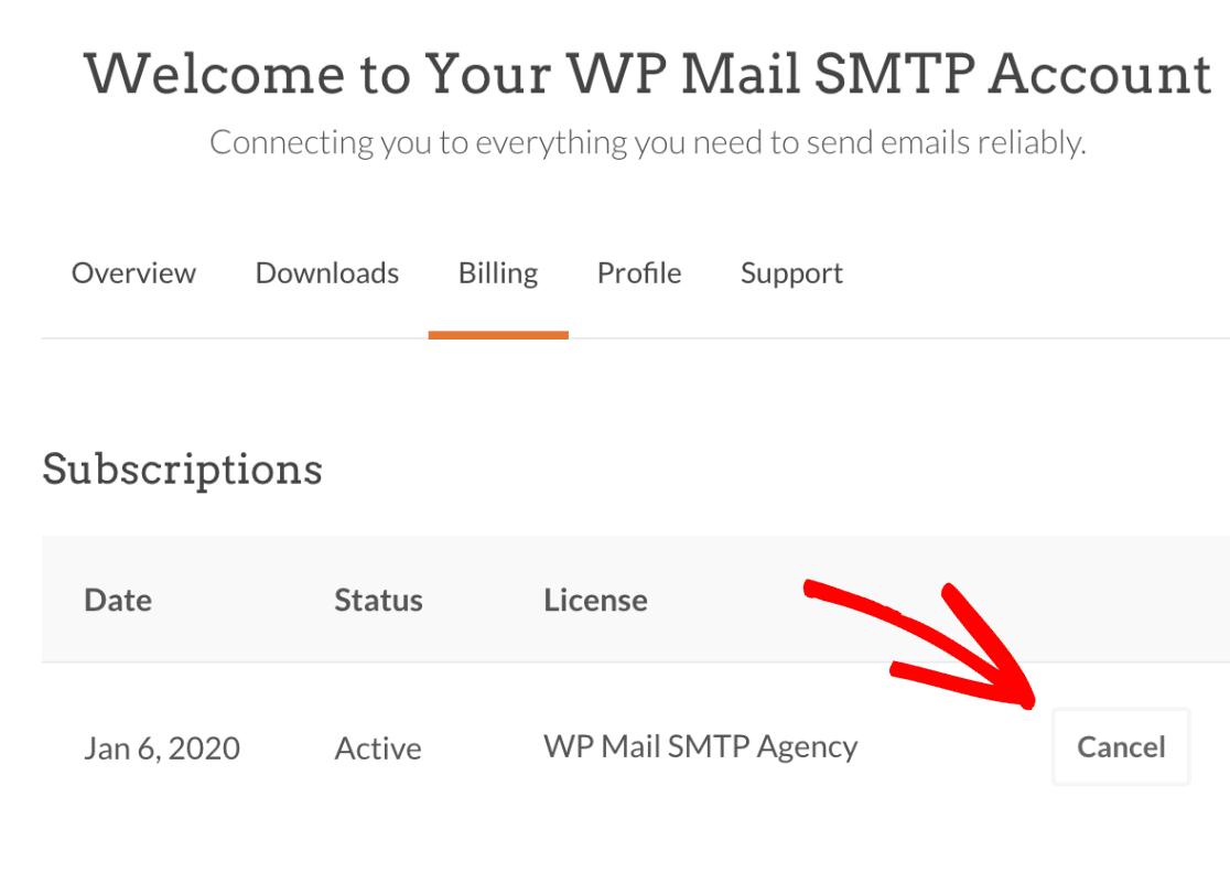 Cancel WP Mail SMTP subscription