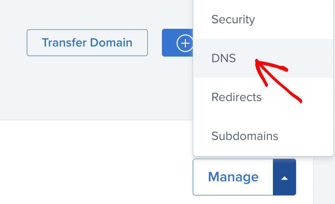 Bluehost edit DNS