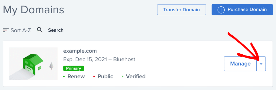 Manage domain to merge SPF in Bluehost
