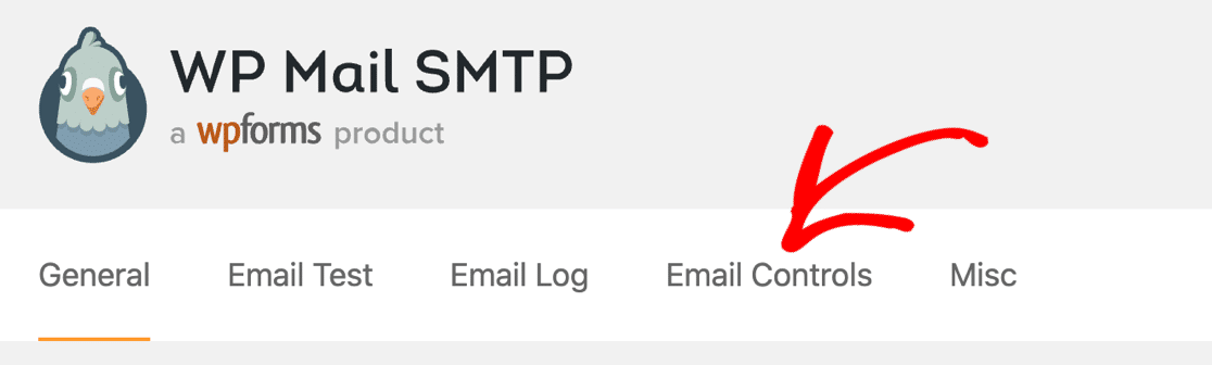Email Controls in WP Mail SMTP