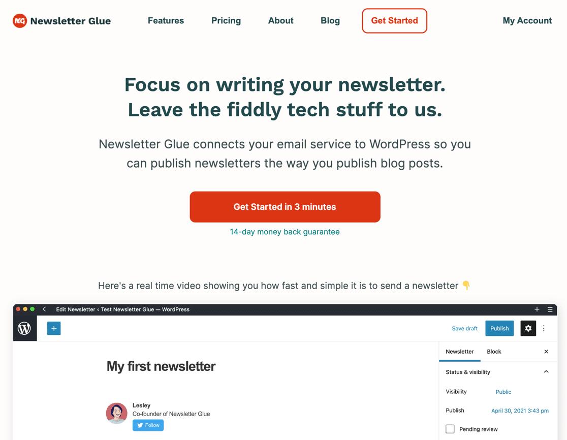 Newsletter Glue homepage