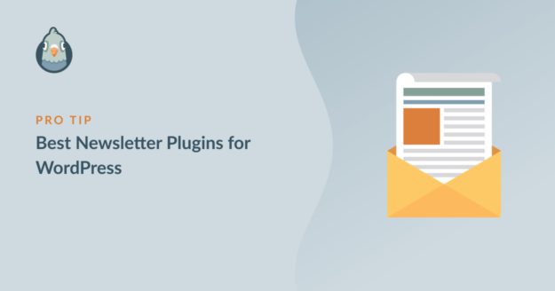 Best Newsletter Plugins for WordPress